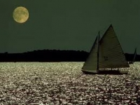 Sail under the moon light